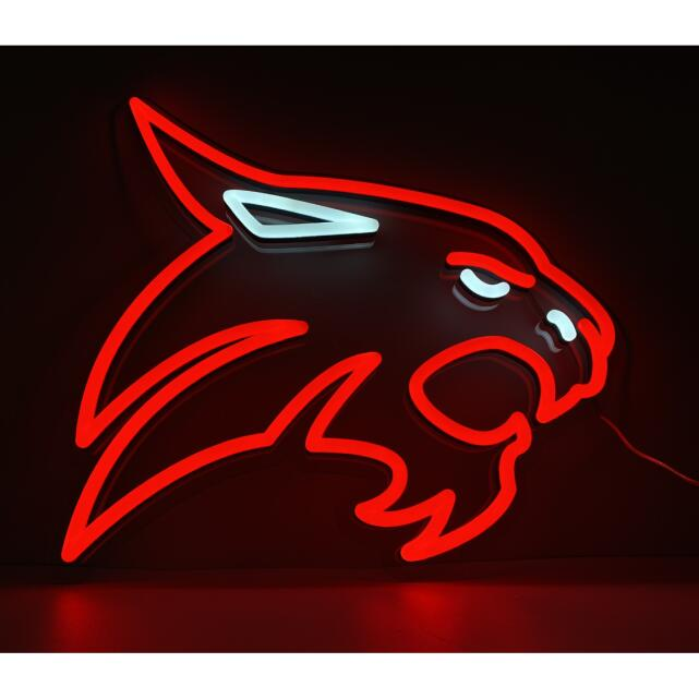 HiNeon LED Neon Signs 5 star review on 3rd February 2021