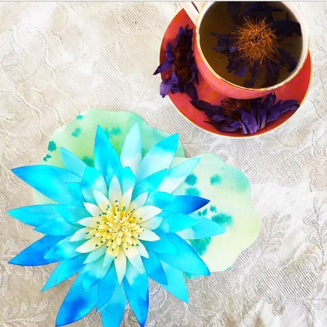 Tea Life 5 star review on 12th November 2020