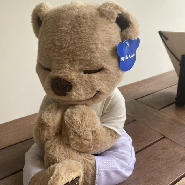 Meddy Teddy 5 star review on 8th July 2020
